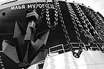 (фото: Анатолий Медведь/ТАСС)