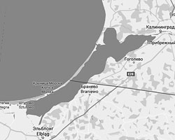 Суда могут попасть в польский Эльблонг только через территориальные воды России (фото: скриншот Google Maps)