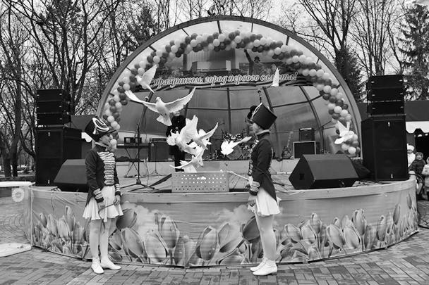 В Белгородской области в честь праздника выпустили белых голубей мира