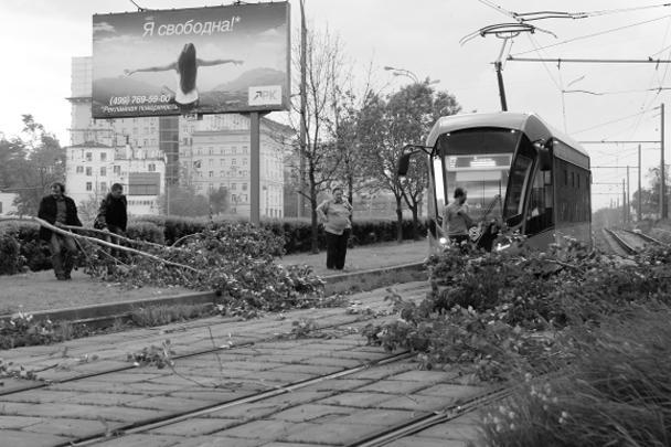 Упавшие деревья перегородили трамвайные пути