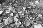 В сарае и при разборе завалов дома Зенкова найдены: винтовка «Мосина», сигнальный пистолет «Вальтер», обрез двуствольного ружья, ППШ, винтовка «Пибоди Мартини», винтовка «Арисака», гранаты РГД 33, М39 и М 24, две минометных мины калибра 50 мм, мина дымовая калибра 82 мм, два нарезных ствола, запалы, магазины, две гильзы 150 мм от артиллерии (фото:  пресс-служба СКР)