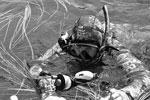 Процесс подводной охоты президент снимал на мобильную камеру, прикрепленную к маске. Снятые кадры быстро разошлись по интернету (фото: Алексей Никольский/ТАСС )