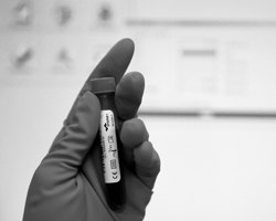 Федерации рассмотрели доказательства и решили, что не могут доказать нарушения антидопинговых правил (фото: Sergei Karpukhin/Reuters)