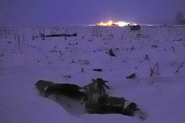 Украинские блогеры заклеймили Климкина за соболезнования после падения Ан-148