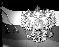 Болят у нас две проблемы – причем, как и головы орла на гербе России, они, на первый взгляд, смотрят в разные стороны (фото: Дмитрий Копылов/ВЗГЛЯД)