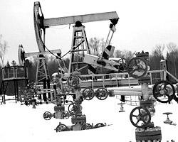 Насколько мне известно, залежи нефти и газа в Московской области еще не открыты… (фото: РИА