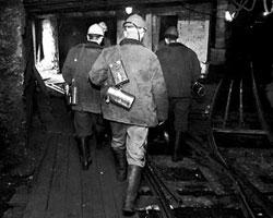 Да, журналист, бумагомарака, обвиняющий шахтера в ЛЕНИ, – это трогательно (фото: ИТАР-ТАСС)