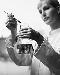Пока действует запрет на клонирование человека, учёные тренируются на выращивании органов и тканей (фото: Getty Images/Fotobank.ru)