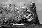 Берега острова Танфильева на Южных Курилах (фото: ИТАР-ТАСС)