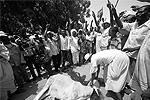 Ритуальное жертвоприношение в честь первого государственного праздника (фото: Reuters)