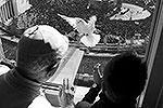 Бенедикт XVI выпускал голубей вместе с юными участниками римской организации «Католическое действие» (фото: Reuters)