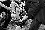 Участницы FEMEN провели акцию с требованием освободить их соратниц, осужденных в Тунисе на четыре месяца тюрьмы, на мероприятии, организованном Альянсом продюсеров Германии, куда прибыла канцлер ФРГ Ангела Меркель (фото: femen.org)