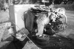 Авария произошла 24 июня около 21.30. Кроме легковушек в ДТП пострадали КамАЗ, два маршрутных автобуса, две пассажирские и одна грузовая «Газели» (фото: ИТАР-ТАСС)