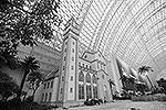 Строительство New Century Global Center заняло три года (фото: EPA/ИТАР-ТАСС)