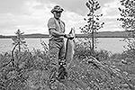 Стало известно о рыбалке, которую несколько дней назад совместно совершили Владимир Путин и Дмитрий Медведев. Президент добыл во время рыбалки знатный трофей – 21-килограммовую щуку (на фото) (фото: ИТАР-ТАСС)