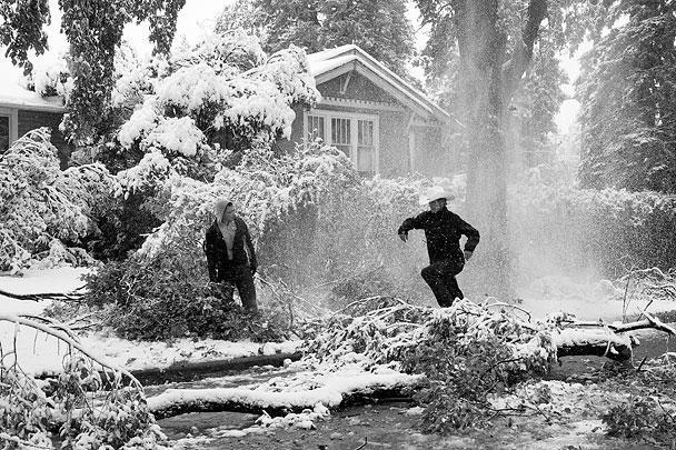 Житель города перепрыгивает через упавшее дерево