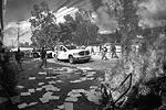 Митингующие подожгли машины у здания конгресса. Напомним, конфликт начался, когда студенты хотели устроить демонстрацию против реформы образования. Местные СМИ, а также общественность и горожане не сомневаются: экс-мэр Игуалы Хосе Луис Абарки приказал бандитам группировки «Единые воины» напасть на них. Шесть студентов были убиты на месте, еще 43 пропали без вести. Как следовало из признания бандитов, они сожгли тела студентов на свалке, после чего прах выбросили в реку (фото: Reuters)