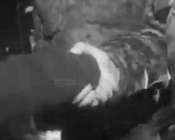 Диалог Моторолы и «Купола» произвел эффект частичного слома «окна Овертона» (фото: кадр из видео выложенного в сети)