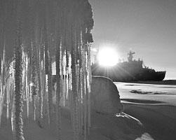 Арктика – это точка роста планетарного масштаба, и тот, кто первым займет соответствующую нишу, в будущем будет процветать (фото: Анна Юдина/РИА