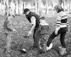 Правда состоит в том, что консерваторы никого никуда не тянут (Фото:Владимир Смирнов/ТАСС)