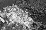 """Сыр, запрещенный к ввозу, оказался на свалке (фото: <a href=""""http://belnadzor.ru"""">Управление федеральной службы по ветеринарному и фитосанитарному надзору по Белгородской области</a>)"""