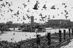 Парадом празднества в честь 70-летия окончания Второй мировой войны не ограничились  (фото: Pang Xinglei/Zuma/ТАСС)
