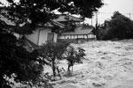 Причиной ливней стали область низкого давления, в которую превратился тайфун «Этау» в Японском море, и влияние тайфуна «Кило» на восточном побережье Хонсю (фото: Issei Kato/Reuters)