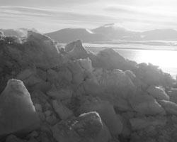 Большинство игроков заинтересовано в сохранении интернационального правового статуса Арктики (фото: Михаил Воскресенский/РИА