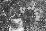 Схрон боеприпасов времен Второй мировой обнаружен под Калининградом. Было найдено более 600 единиц боеприпасов: немецкие мины, патроны, детонаторы и зажигательные трубки