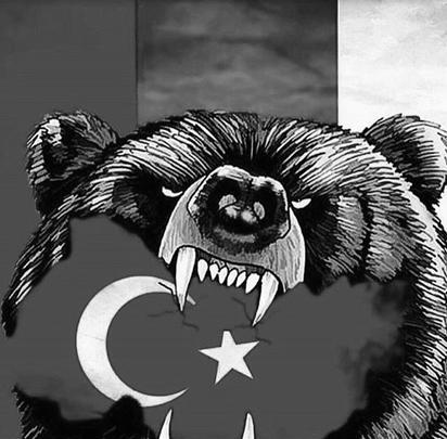 Некоторые коллажи обращены в сторону России - они призывают дать ответ на поведение Турции
