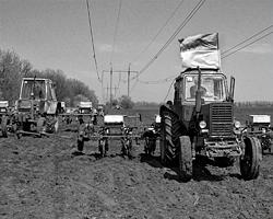 Украину намереваются скупить оптом (фото: Константин Сазончик/ТАСС)