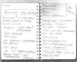 Записная книжка Нади (кликните по фото для увеличения)
