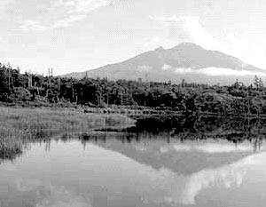 Переговоры будут вестись вокруг островов Хабомаи и Шикотан