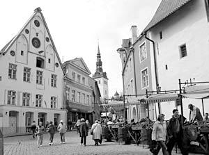 В Эстонии основной проблемой остается проблема так называемых неграждан