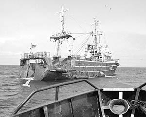 Неожиданно закончилась погоня за браконьерами в Охотском море, длившаяся несколько часов