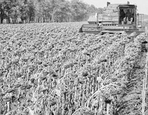 После вступления Украины в ВТО на импорт сельхозтехники зафиксировали нулевую ставку. «Это неправильная позиция, потому что в ЕС со своими плугами мы прорваться не можем»,  - возмущается глава Федерации работодателей Украины