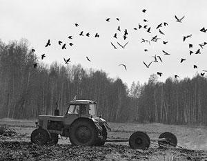 Под угрозой срыва на Украине не просто посевная, а надежда на доходы от экспорта зерна