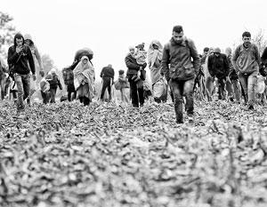 Число нелегальных мигрантов, бежавших в страны ЕС, перевалило за 700 тысяч