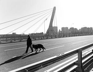 Мост мог бы называться Дудергофским, но скорее всего получит имя Ахмата Кадырова