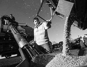 Россия вернула себе мировое лидерство по экспорту пшеницы