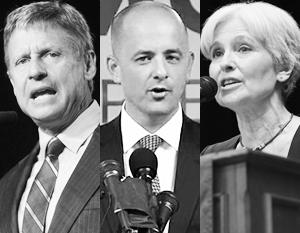 Наиболее известные альтернативные кандидаты – бывший губернатор Нью-Мексико Джонсон, бывший сотрудник ЦРУ Макмаллин и лидер экологов Стайн