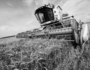 После пятипроцентного роста сельское хозяйство РФ ждет нулевой