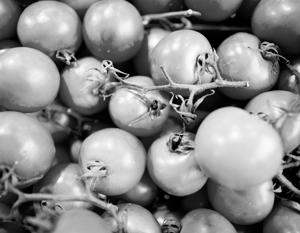 СМИ: Грузия занимается контрабандой турецких помидоров