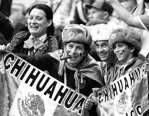 Иностранные болельщики смогли вдоволь насладиться футболом в России