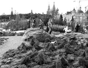Посетители парка могли принять редкие растения за обычные сорняки, но некоторые были замечены за целенаправленным выкапыванием