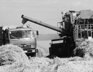 СМИ: Глобальное потепление пойдет на пользу сельскому хозяйству России
