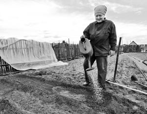Пенсионеров освободили от налогов за шесть соток огородов