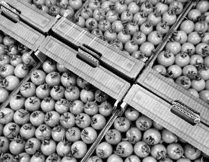 Турецких поставщиков томатов в Россию заподозрили в обмане