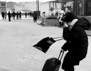 Журналисты сообщили об урагане на Олимпиаде