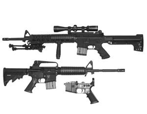 Названо оружие, которым стрелок из Флориды убил 17 школьников